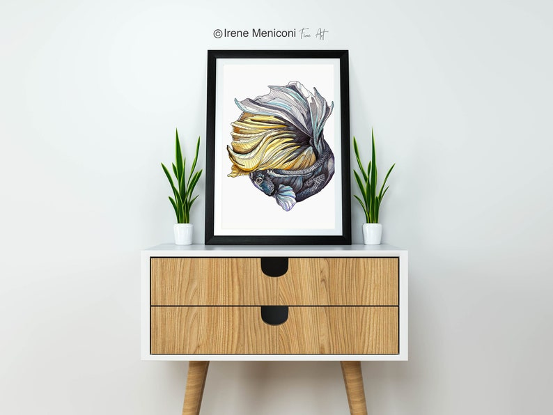 animal art fine art Gicl\u00e9e print home decor PRINT limited edition Siamese fighting fish