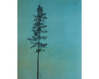 Giclée Print of Monotype by Sarah Hallman