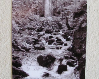 5x7 Vertical Black and White Print ~ Stream