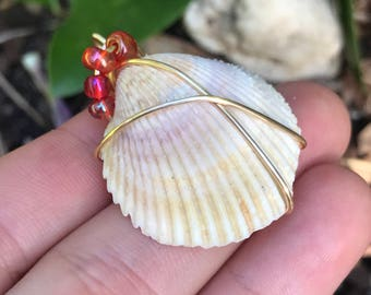 Wire wrapped sea shell necklace