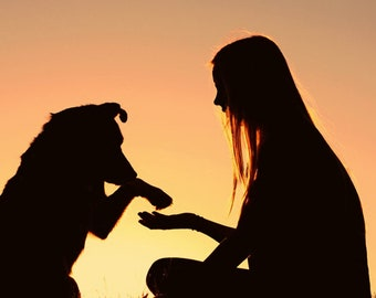 Accurate Clairvoyant/Psychic Pet Reading
