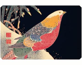Poster A3 Print Golden Pheasant