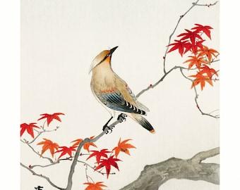 Poster A3 Japanese print Plague Bird