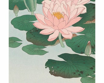 Poster A3 Japanese print Water Lilies