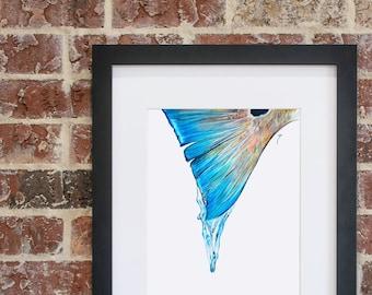 Redfish Drip Tail | Giclee Prints