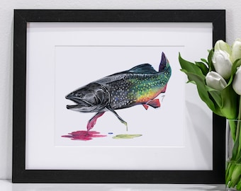 Brook Trout Pastel | Giclee Prints