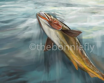 Rising Cutthroat Trout | Giclee Prints
