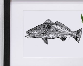 Speckled Trout Ink Pen |  Giclee Prints