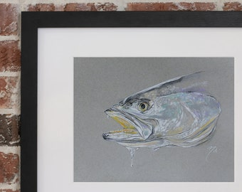 Speckled Trout Pastel  | Giclee Prints