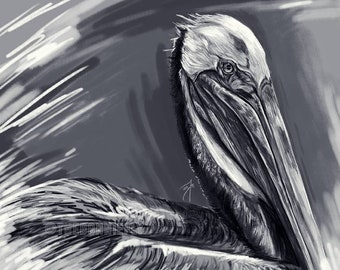 Pelican Digital Painting Prints / Fish Art / Coastal Decor / Sea Life Artwork / Black and White Print / Giclee Paper / The Bonnie Fly