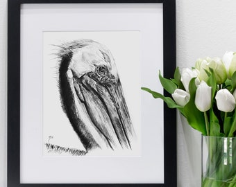 Pelican Charcoal Sketch | Giclee Prints