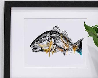 Redfish Melting Gold Portrait | Giclee Prints