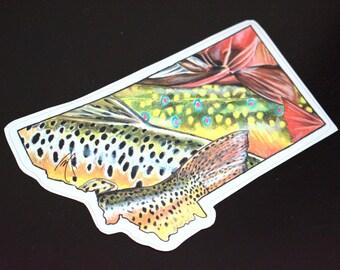 Montana Fly Fishing Decal