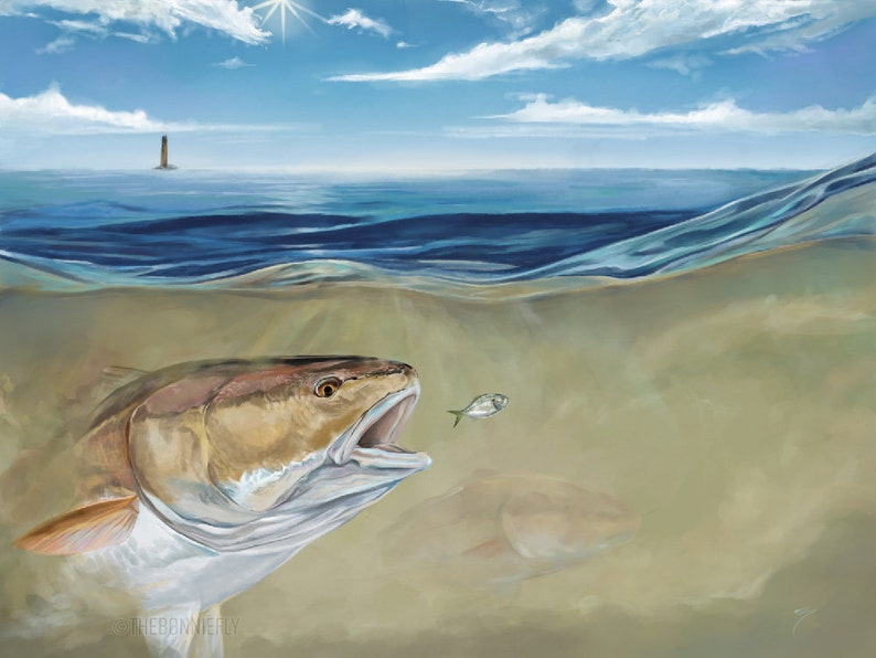 Outgoing Tide Painting / Vibrant Inshore Fishing Portrait / Giclee Prints  Canvas / Red Drum / Saltwater Slam Speckled Trout