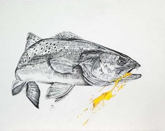 Yellowmouth Original Sketch | Pastel Charcoal Mixed Media