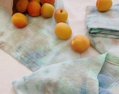 ALGAE cloth napkin set - Handmade and Hand-Dyed - Reusable - for Dinner Parties, Weddings, and Cocktails