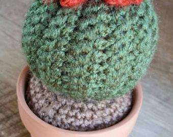 Crochet Barrel Cactus