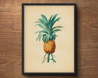 Pineapple Wall Art, Pineapple Print Art, Botanical Wall Art, Pineapple Print, Large Wall Art, Wall Print Pineapple, Large Pineapple Print