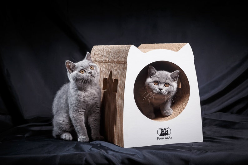 Eco-friendly Cat House / Scratcher SUBWAY off corrugated image 0