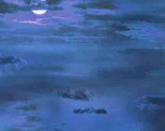 Elizabeth Studios Night Sky