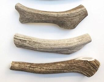 Organic Deer Antler Dog Chews | Medium Antler | Vegan | Natural Dog Bone