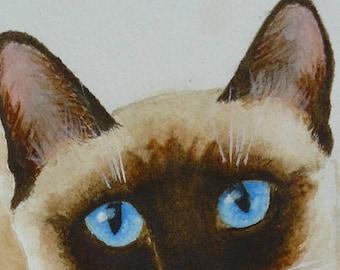Siamese cat original watercolor small portrait painting