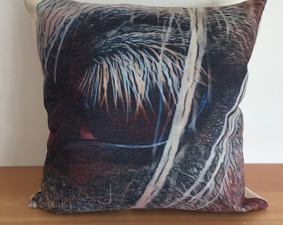"Abstract Horse Eye Pillow Cover 20"" by 20"""