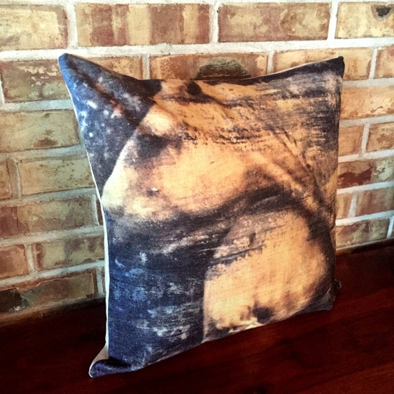 Rustic Modern Horse Pillow Cover inspired by Crazy and his Mom