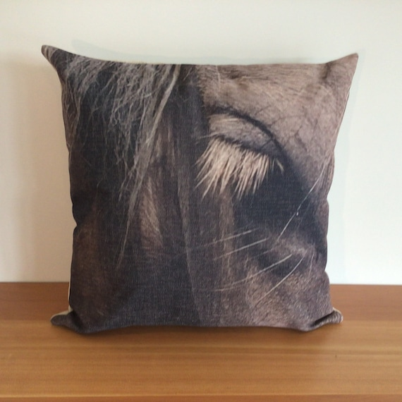 """Wild Horse Eye Pillow Cover 20"""" by 20"""""""
