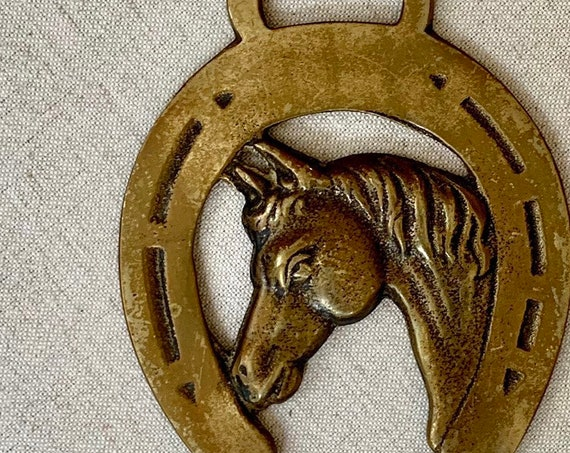 Brass Horseshoe Medallion Good Luck Symbol Vintage Home Ranch Cabin Equestrian Decor Horse Head Wall Mount Hanging