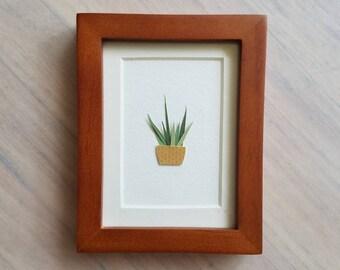 Sansevieria Plant - Original Art, Framed