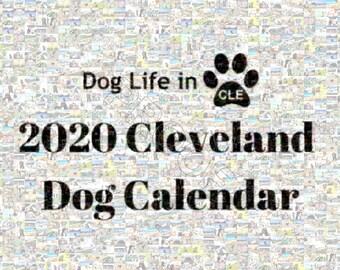 Dog Lifein CLE