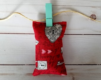 Funny cat toy, organic catnip, Valentine's day, red padlocks and keys, small pillow shape, cat furniture, handmade cat toy, crazy cat lady