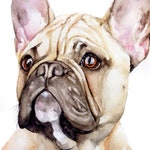 Custom Pet Portrait, Pet Loss Gifts, Pet Watercolor, Dog Painting, Custom Dog Portrait, Christmas Gift Idea, French Bulldog Watercolor