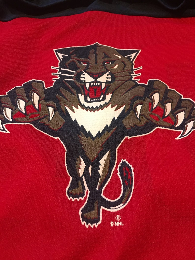 2ef759d1d Vintage Florida Panthers Jersey   Logo 7  NHL Hockey   Youth