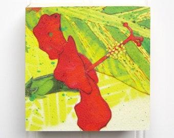Hibiscus Print on Wood Panel (4 x 4)
