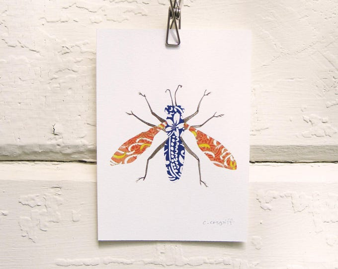 Blue and Orange Moth Print