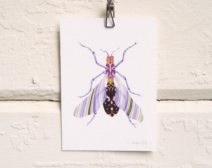 Lavender Marble Wing Bug Print