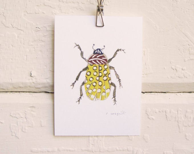 Yellow Feather Bug Print