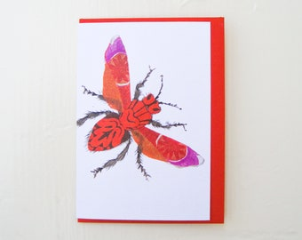 Pink and Orange Moth Card