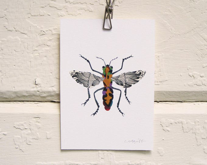 Walking a Fine Line Moth Print