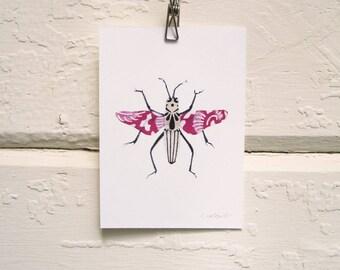 Hot Pink and Black Bug Print