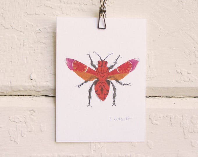Pink and Orange Moth Print