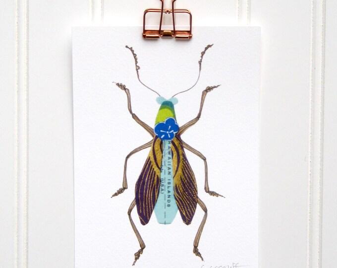 Aloha Bug  Print