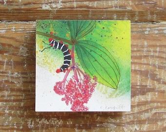 Tropicalia Caterpillar Print on Wood Block (4 x 4)