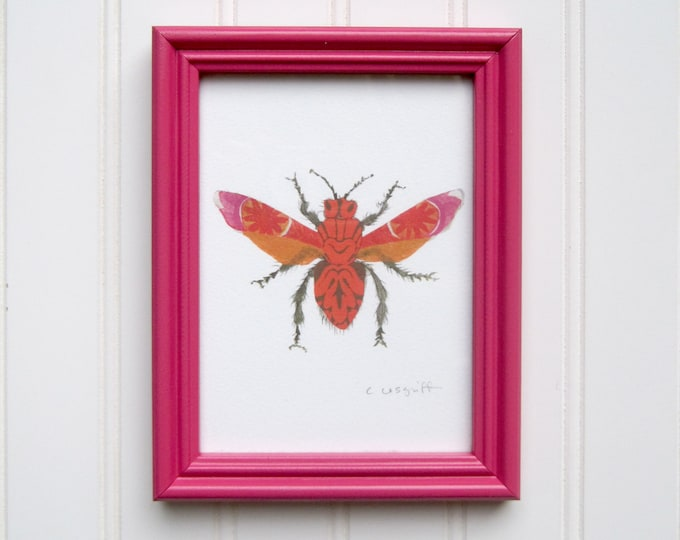 5 x 7 Framed Bug Print - Pink & Orange Moth