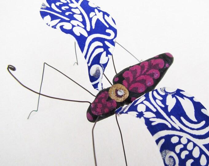 Rhapsody in Blue Bug