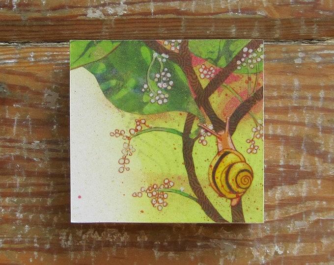 Tropicalia Snail Print on Wood Block (4 x 4)