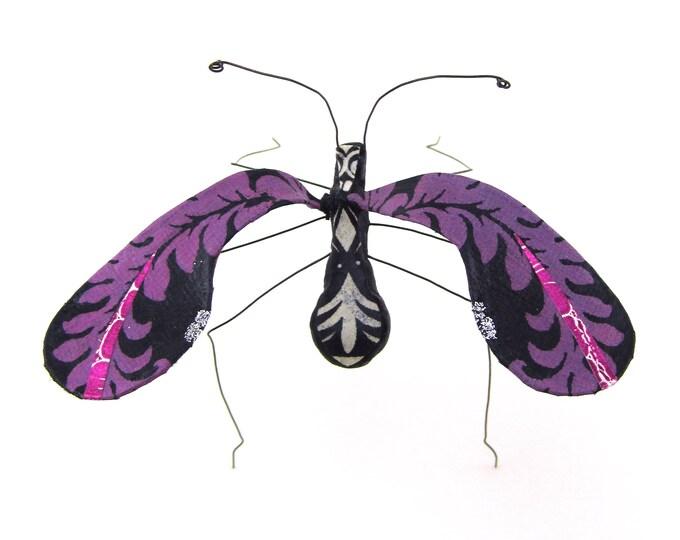 Mariachi Moth