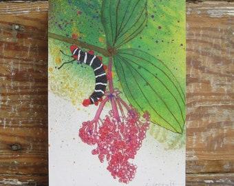 Tropicalia Caterpillar Print on Wood Block (5 x 7)
